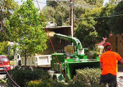 Large Mulching machine to Mulch tree waste